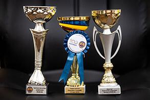 Cupe câștigate - CECCAR în anii 2014, 2015, 2018